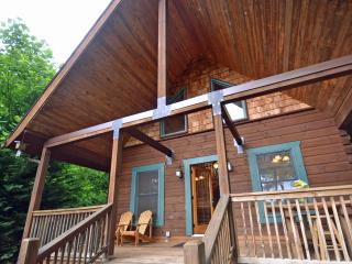 Soaring Eagle Bryson City North Carolina - Bryson City vacation rentals