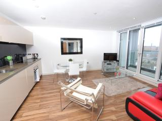 Nice Condo with Internet Access and Long Term Rentals Allowed (over 1 Month) - Manchester vacation rentals