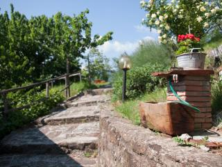"""""""Le scalette"""" country way of life - Vicchio vacation rentals"""