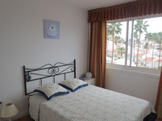 Sea view spacious 2 bedroom Apt - Playa de Fanabe vacation rentals