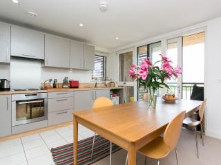 Bright Condo with Internet Access and Washing Machine - London vacation rentals