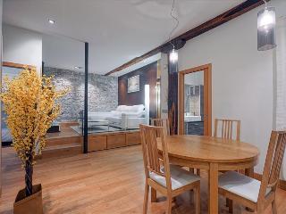 ARRASATE APARTMENT - San Sebastian vacation rentals