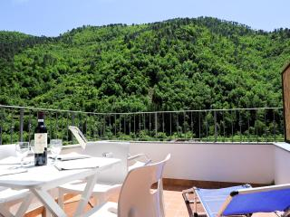 Panoramic 2 bedrooms flat with balcony and terrace - Pigna vacation rentals