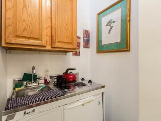 Central Park Luxury  Suite Beautiful Apartment! - New York City vacation rentals