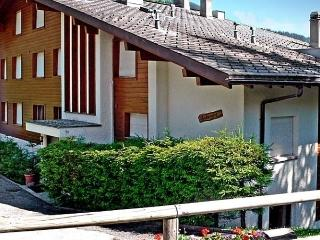 Entremont Apt. 69 - Verbier vacation rentals