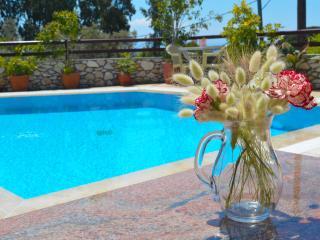 Villa Maraki, Agia Paraskeui(Platanias ) ,Skiathos - Platanias vacation rentals