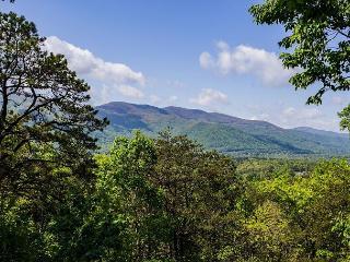 Welker Mountain Home - Montreat vacation rentals