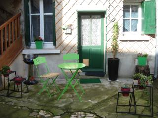 nice  flat, yard, next to centre and Loire river, - Tours vacation rentals