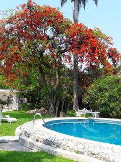 Jolie maison de vacance et de week-end - Xochitepec vacation rentals