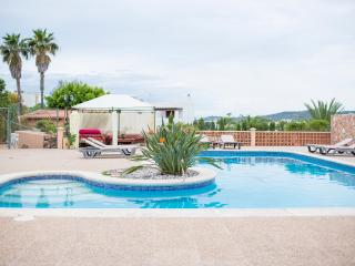 Wonderful house with large pool and outdoor space - San Jose vacation rentals