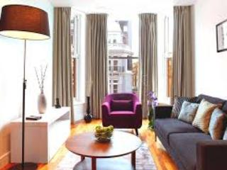 2 Bed apartment close to South Kensington station - Image 1 - London - rentals