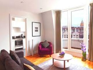 2 Bed apartment close to South Kensington station - London vacation rentals