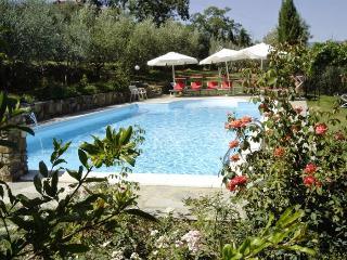 6 bedroom Villa in Pergine Valdarno, Arezzo And Surroundings, Tuscany, Italy : ref 2135234 - Pergine Valdarno vacation rentals