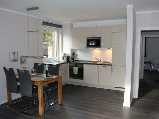 Modern deluxe flat direct located at the Wurmberg - Braunlage vacation rentals
