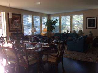 Beautiful Condo with Elevator Access and Long Term Rentals Allowed - San Rafael vacation rentals