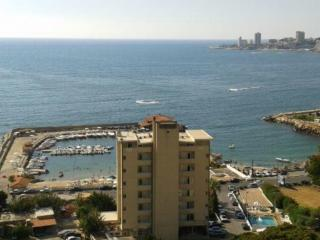 Sunny Condo with Internet Access and A/C - Jounieh vacation rentals