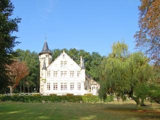 Villa in Lencloitre, Loire, France - Lencloitre vacation rentals