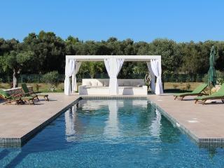 4 bedroom Villa in Lizzanello, Puglia, Italy : ref 2226439 - Pisignano vacation rentals