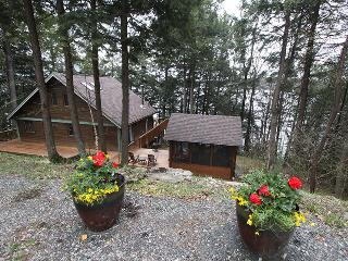 Perfect Cottage with Deck and Television - Haliburton vacation rentals