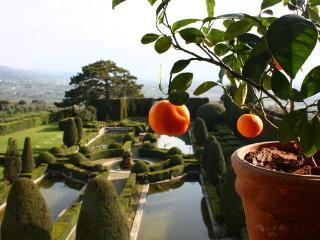 9 bedroom Villa in Settignano, Firenze Area, Tuscany, Italy : ref 2230212 - Settignano vacation rentals