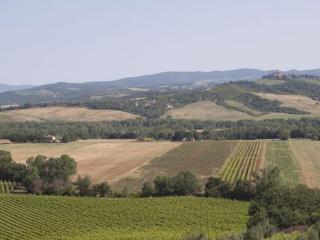 Apartment in Borgo Santa Rita, Siena Area, Tuscany, Italy - Poggio alle Mura vacation rentals