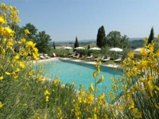 Apartment in San Gimignano, Siena Area, Tuscany, Italy - San Gimignano vacation rentals