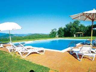 5 bedroom Villa in Radda In Chianti, Siena Area, Tuscany, Italy : ref 2230394 - Radda in Chianti vacation rentals