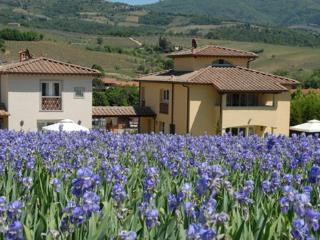 5 bedroom Villa in Greve, Firenze Area, Tuscany, Italy : ref 2230565 - Greve in Chianti vacation rentals
