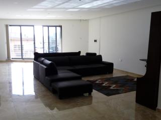 Nice Condo with Internet Access and A/C - Haz-Zebbug vacation rentals