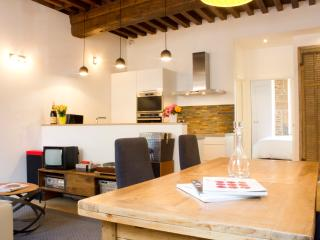NEW - Millesime78 - Beaune Centre - Beaune vacation rentals