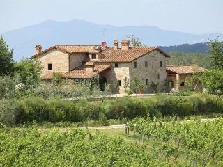 5 bedroom Villa in Florence, Mercatale Val di Pesa, Florence, Italy : ref - Ponte di Gabbiano vacation rentals