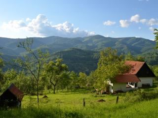 Carpathian Cottage - with Sauna - Brad vacation rentals
