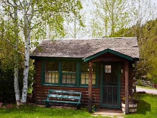 Secluded Studio Cabin on Roaring Fork River – Gold Medal Fishing - Snowmass vacation rentals