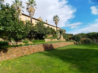 Apartment in Manciano, Maremma, Tuscany, Italy - Marsiliana vacation rentals