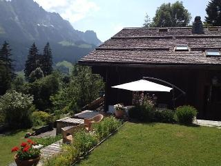 Apartment in Rougemont, Alpes Vaudoises, Switzerland - Rougemont vacation rentals