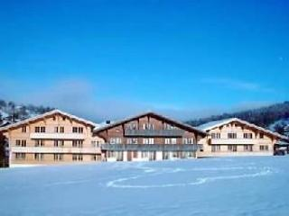 6 bedroom Apartment in Schonried, Bernese Oberland, Switzerland : ref 2297049 - Schönried vacation rentals