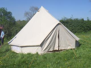 Leafy Fields Glamping, Buttercup - Uffculme vacation rentals