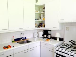 Large studio with garden and terrace - Duivendrecht vacation rentals