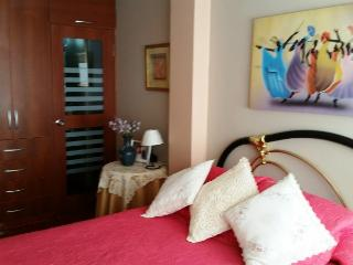 Nice Condo with Television and DVD Player - Arequipa vacation rentals