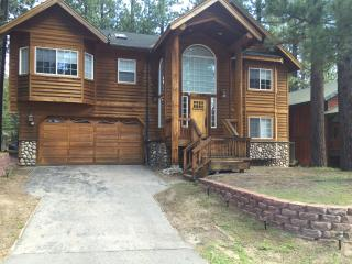 upscale house facing wild park - South Lake Tahoe vacation rentals