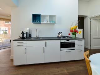 City center apartment with sunny terrace - Haarlem vacation rentals