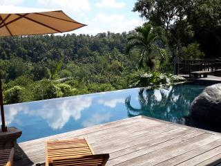 Villa kamaniiya,5 bedrooms Private and luxury - Sayan vacation rentals