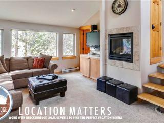 Snodallion 5 Bedroom - Breckenridge vacation rentals