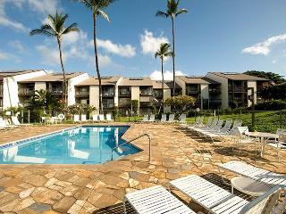 Hale Kamaole 2 Bedroom 202 - Kihei vacation rentals