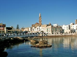 Perfect House with Dishwasher and Short Breaks Allowed - Monopoli vacation rentals