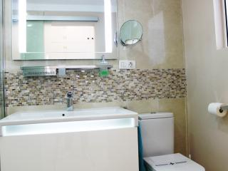 PrimeHomes - Santa Cruz City Central Deluxe Apt. - Santa Cruz de Tenerife vacation rentals