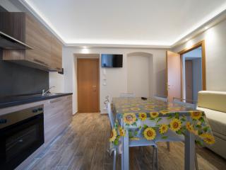 1 bedroom Resort with Internet Access in Bardonecchia - Bardonecchia vacation rentals