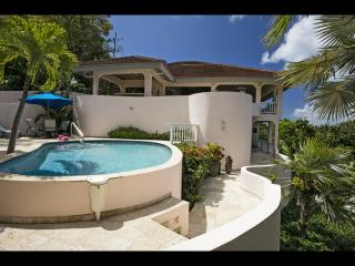Bright Villa with Internet Access and Television - Virgin Gorda vacation rentals