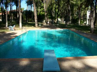 Forest Villa in Sani with Sea View - Sani vacation rentals