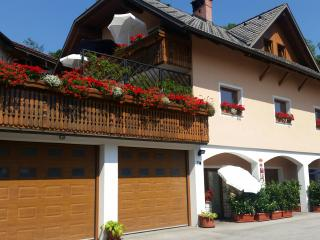 1 bedroom House with Internet Access in Bled - Bled vacation rentals